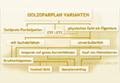 Goldsparplan Arten